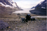 The Columbia Icefield - Athabasca Glacier