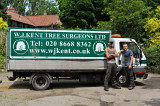 Tree Surgery 28th June 2012