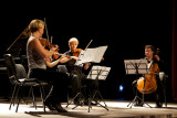 Cultural music-evening donated by the Austrian government to the people of Grevena