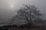 Cloud Inversion - Cwmbowydd farm , Blaenau Ffestiniog