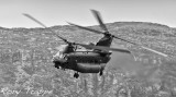 Chinook in BW