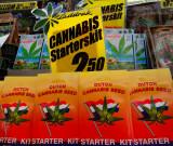 Cannabis starter kit: Euro 2.50
