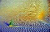Mauritanie-007.jpg