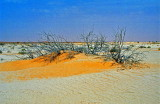 Mauritanie-027.jpg