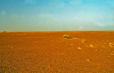 Mauritanie-055.jpg