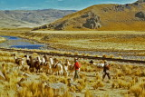 Pérou-101.jpg
