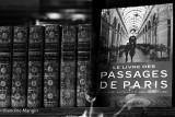 Les galeries parisiennes