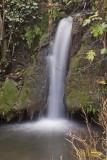 ARROYO BEJARANO, 16 noviembre 2011