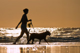 Woman with Dog in the Surf