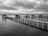 Clay County Docks II.jpg