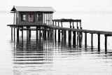 Clay County Docks VII.jpg