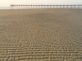 The Texture of Low Tide