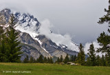 Alberta 2011