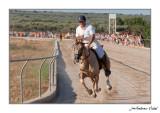 Curses de cavalls 2011. La Sénia (Montsià)
