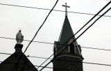 Holy Cross Through The Wires