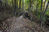 Hiking Trail Bridge Rowe Woods