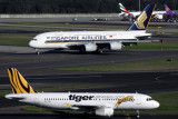 SINGAPORE AIRLINES TIGER AIRCRAFT SYD RF IMG_9835.jpg