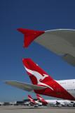 QANTAS AIRCRAFT SYD RF IMG_6206.jpg