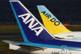 ANA AIR DO AIRCRAFT HND RF IMG_1107.jpg