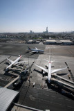 DUBAI AIRPORT DXB RF  IMG_6708.jpg