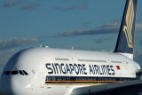 SINGAPORE AIRLINES AIRBUS A380 SYD RF IMG_3996.jpg