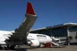 QANTAS AIRBUS A330 300 BNE RF IMG_6981.jpg