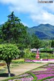 Boquete, Panama 2012