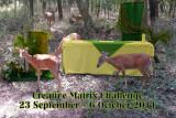 CreativeMatrix Challenge for 23 September to 6 October 2011