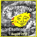 cybergrannie_challenge_august_20122
