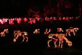 The Great Jack O'Lantern Blaze - Cows