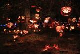 The Great Jack O'Lantern Blaze - Butterflies