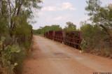 CR 220 - Bull Creek, Coleman County