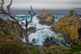 Point Lobos 12-2011
