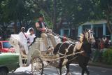 Cuban wedding!