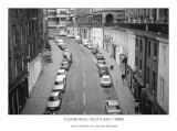 lining the street
