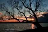 Sunset on Cayuga Lake