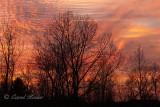 Corduroy Sky