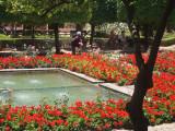 Gardens at Alcázar de los Reyes Cristianos