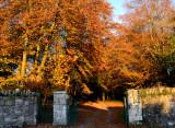 Autumn at Anaverna
