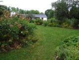 The Backyard Garden in July 2011