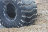 Huge tire on Saquish  April, 2011