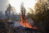 de Birmezen en Laotianen branden in de droge tijd het bos plat om suikerriet te verbouwen