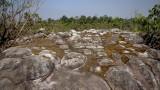 Nodular stones