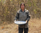 Laos woman shaking eggs of red ant