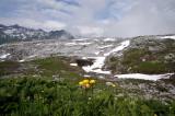 Alpen natianaal park, Lechquellengebirge 2400 mtr.