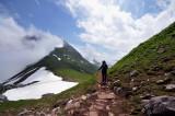 Alpen nat. park