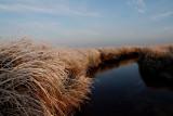 Texel slufter