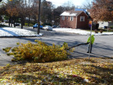Hauling the tree limbs to the chipper