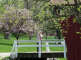 Welcome to the covered bridge