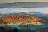 Morning Fog: Giles County